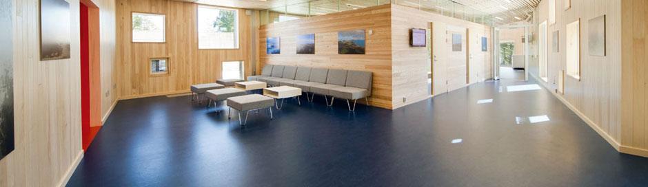 marmoleum commercial flooring  ledbury herefordshire